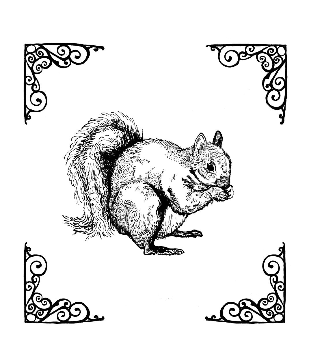 Squirrel Tote Bag Design