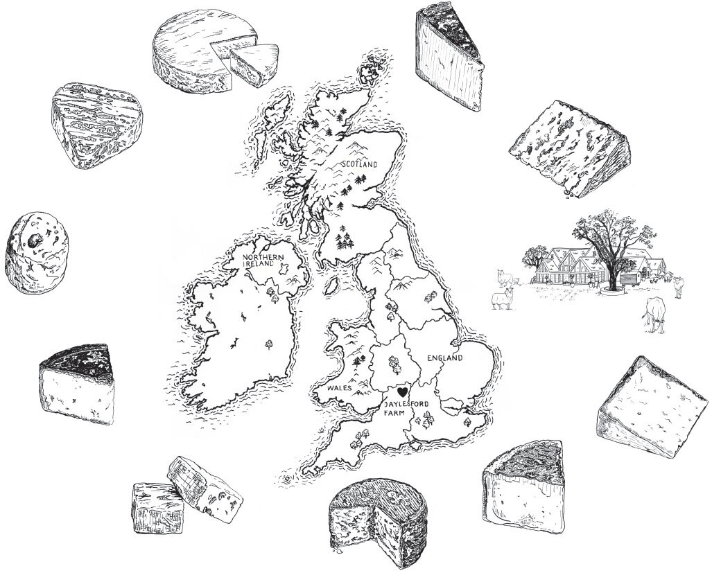 Regional Cheese Map of Britain for Daylesford Organic