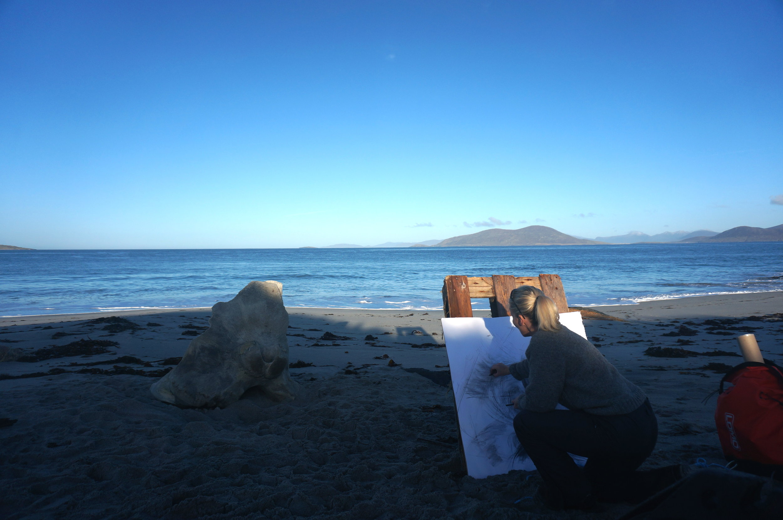 Drawing a Sperm Whale skull on the West side of Berneray, Outer Hebrides.
