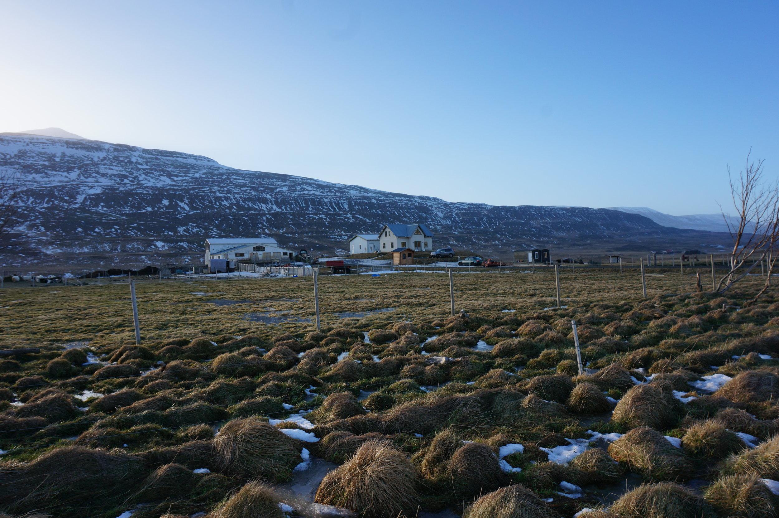 Sigrún's family farm Stórhóll   in   Skagafjarðarvegur, Northern Iceland