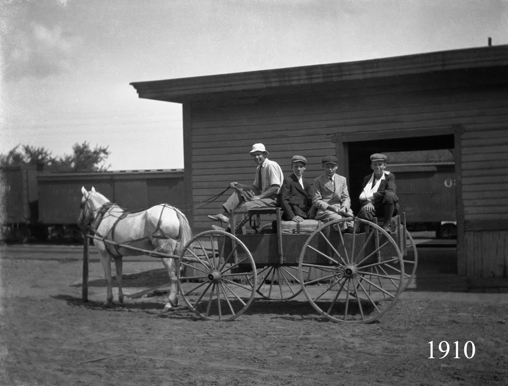 Horse Cart to Camp 1910