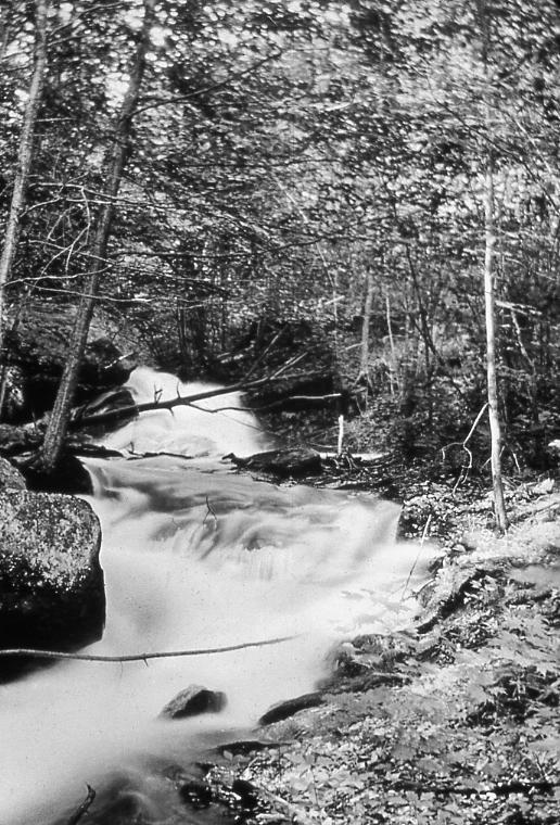 Rushing Stream (Dam).jpg