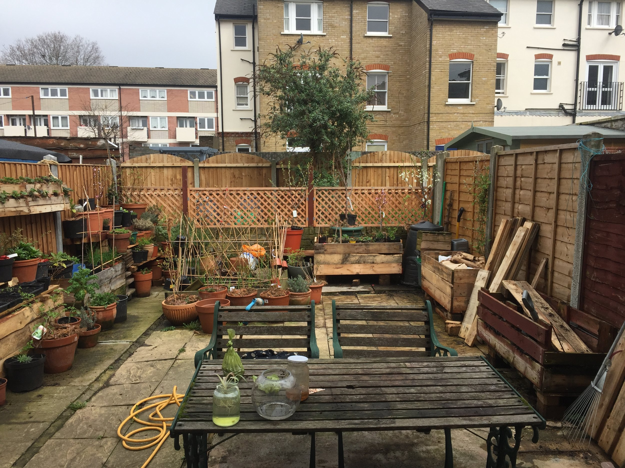 We've used up most of the wood we salvaged to build planters around the border of the garden.
