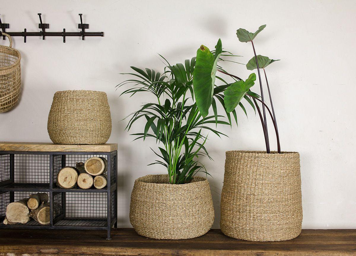 nkuku plant holder eco friendly