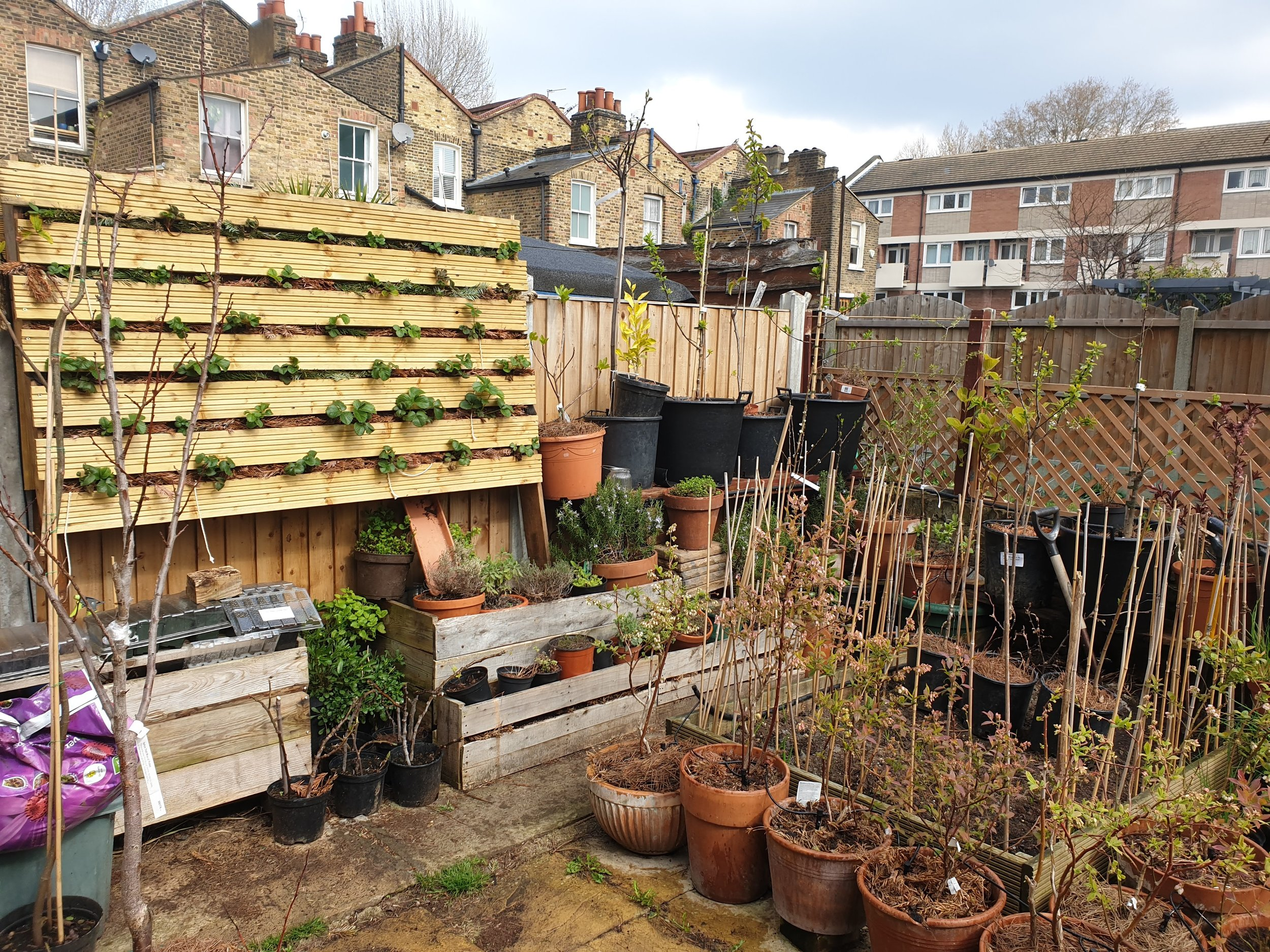 The newly made vertical plant hanger on the left of the image. The older one placed on the floor as a herb container