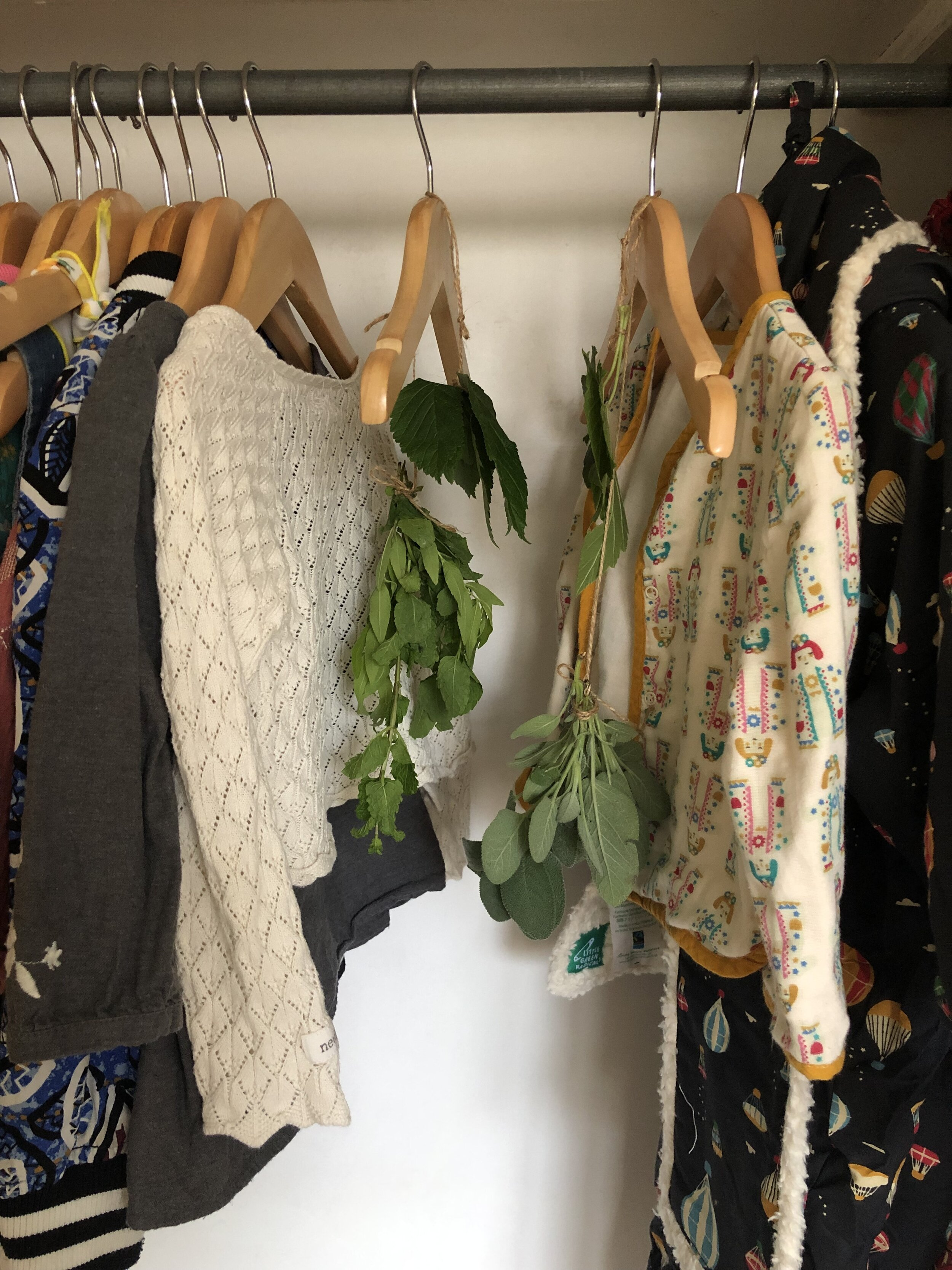 Drying herbs in the nursery cupboard - a cool and dry space!