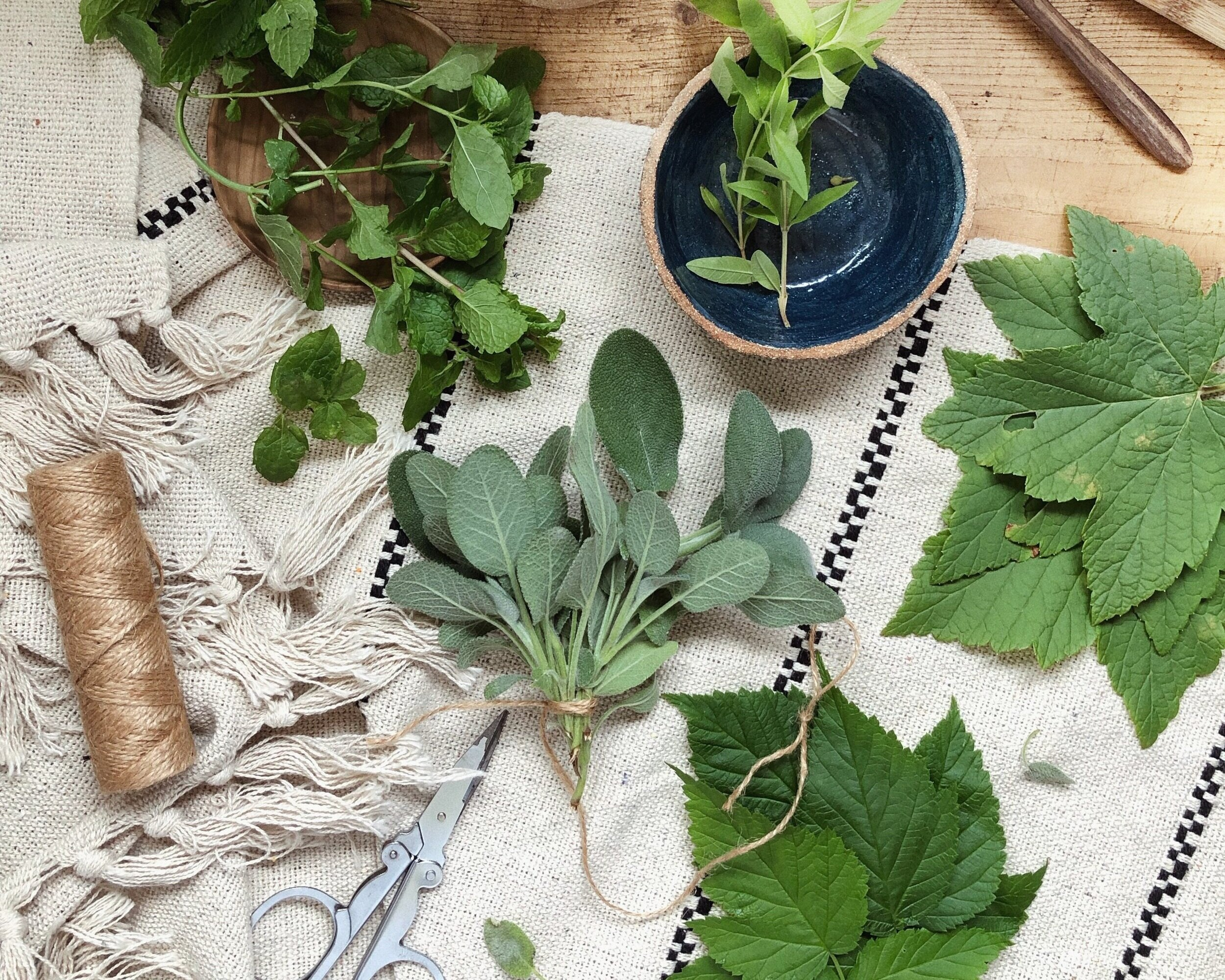 DIY herbal tea - make your own plastic-free tea, zero waste - 4 recipes