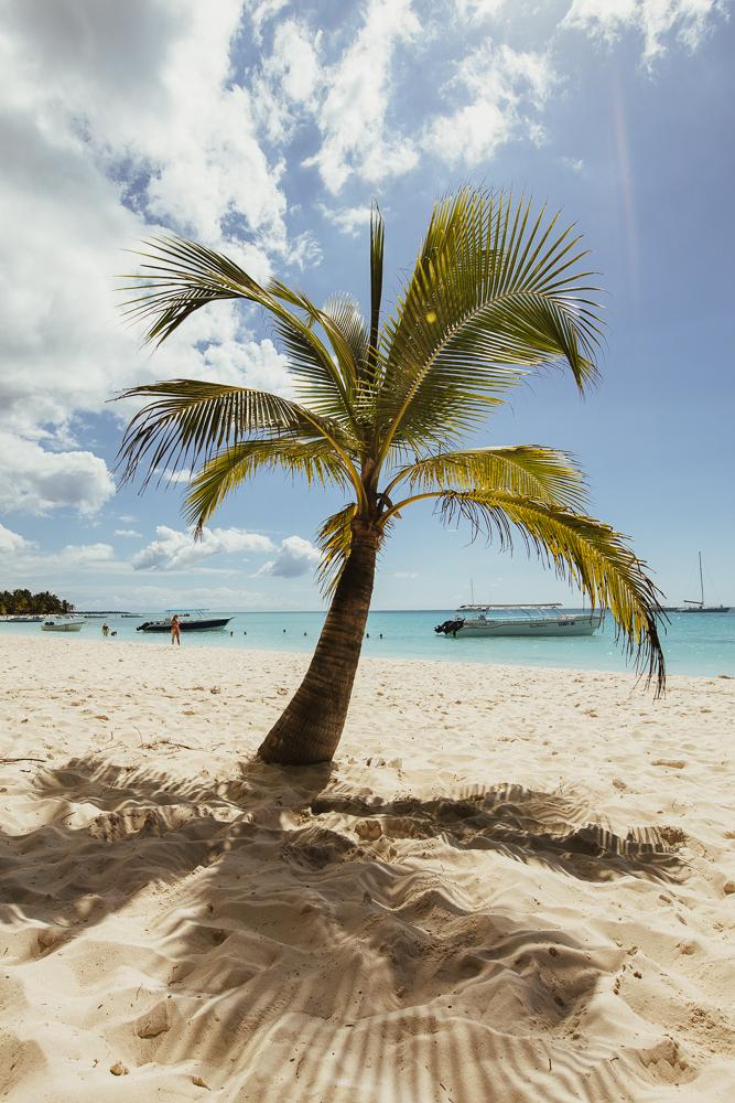 aiota-saona-island-28.jpg
