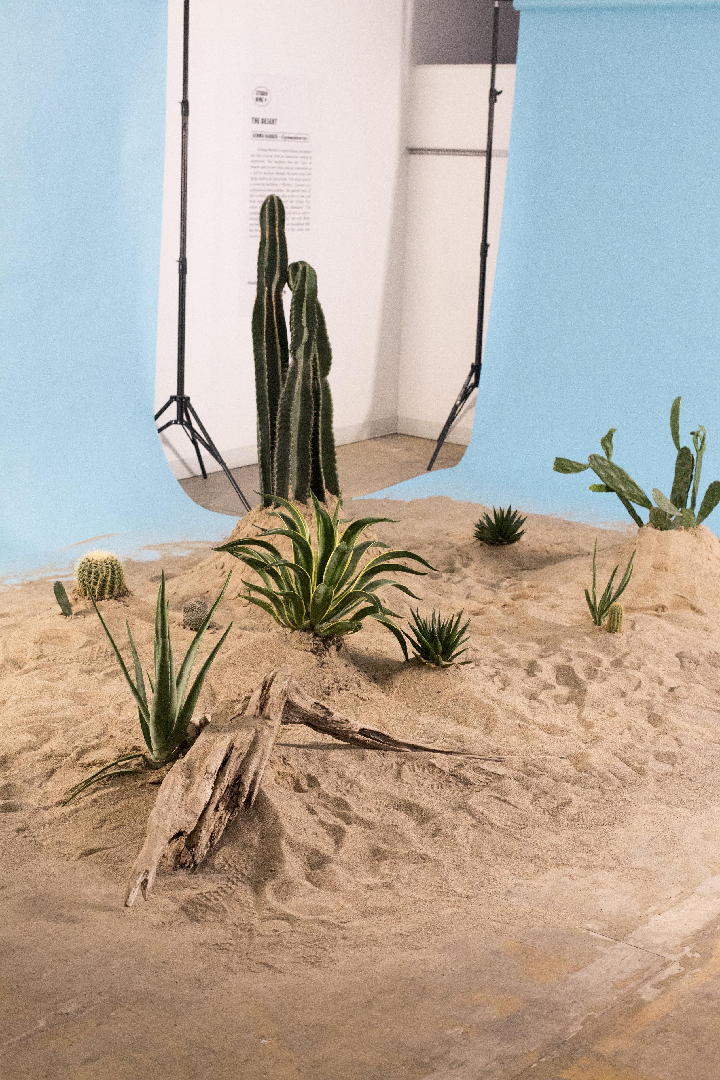 Installation inspired by Gemma Warren
