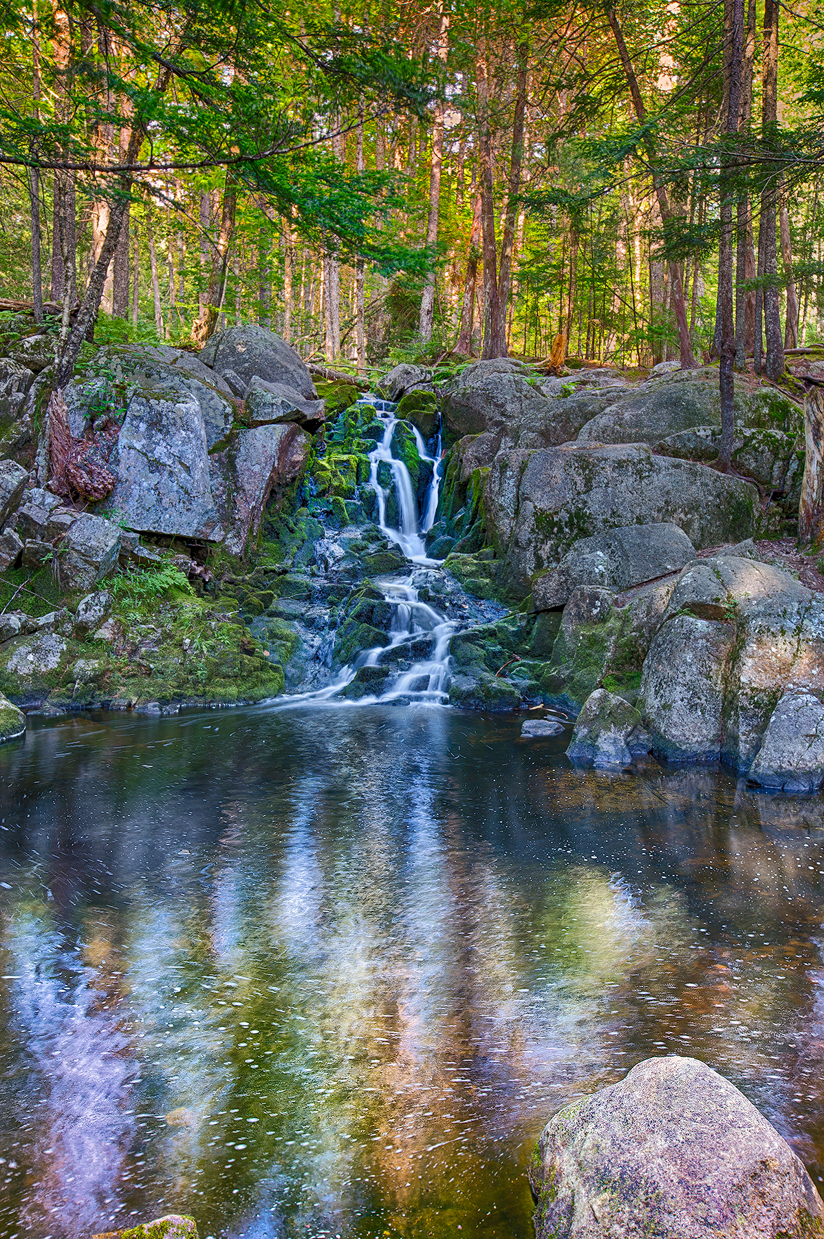 Pond_Trail3.jpg