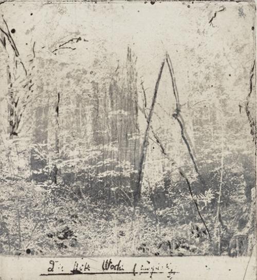 """Bartholomew Park, 2017 photo etching, dry point image size: 5 ½"""" x 5 1/2"""