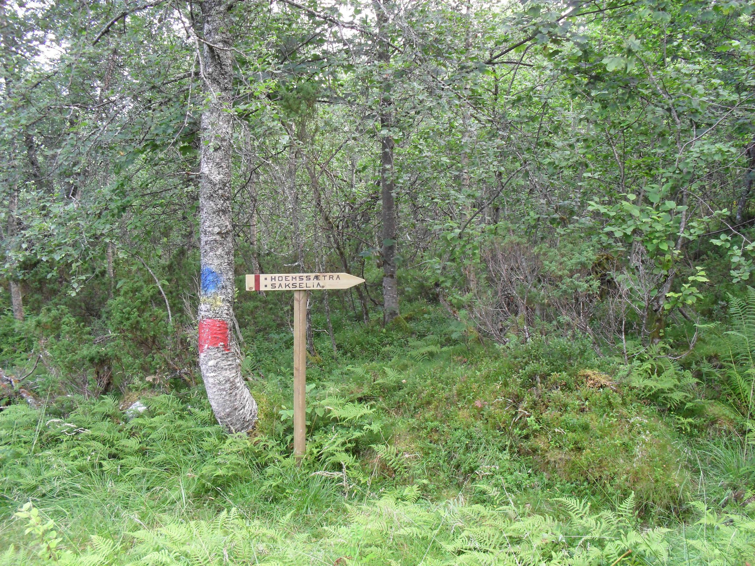 Fagervik Camping_ Copyright 2015_118.jpg