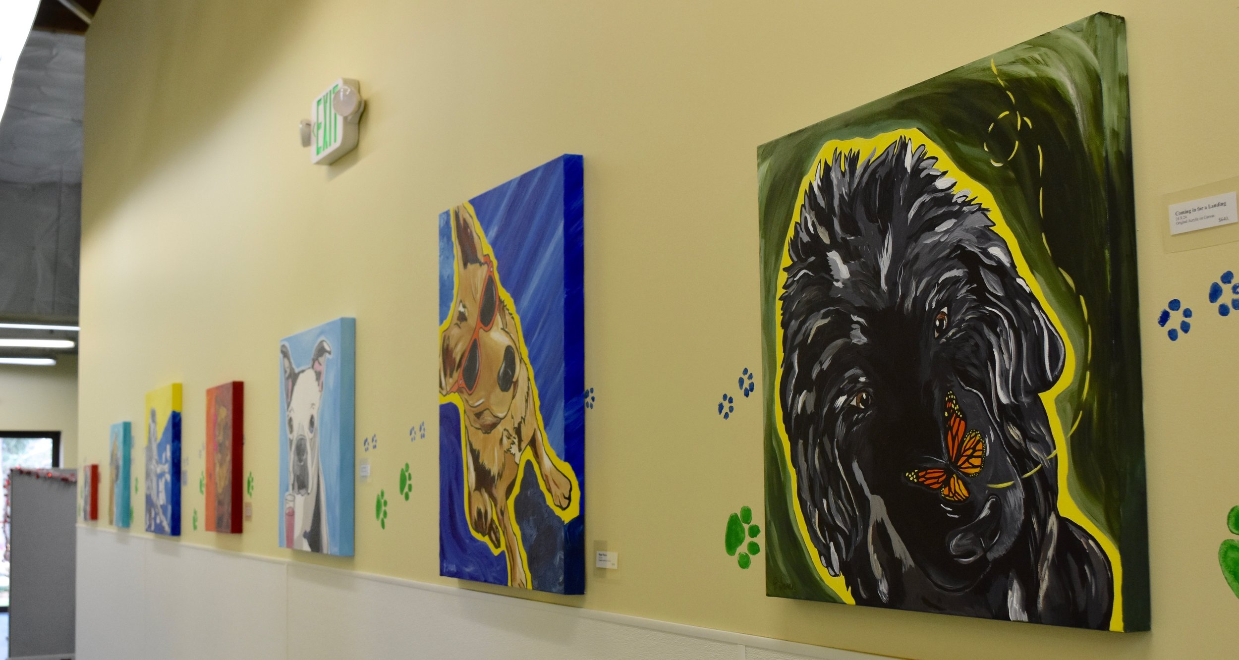 Fresh and colorful paintings line the wall at Homeward Pet, a no-kill shelter in Woodinville, Washington.