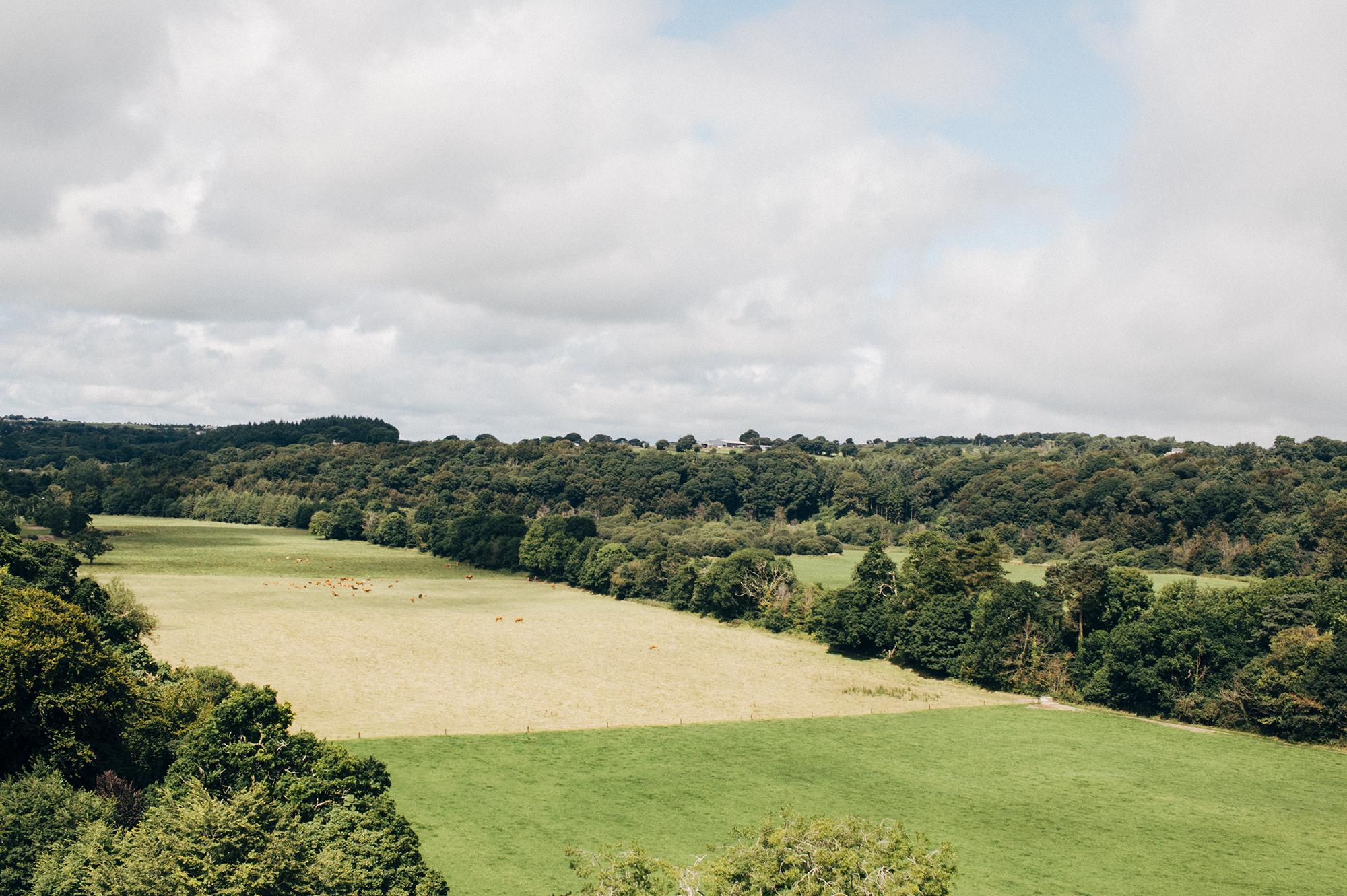 County Wicklow + Kilkenny_07282016_031 copy.jpg