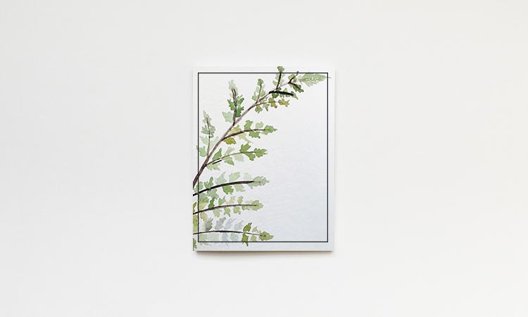 fern_watercolor.jpg