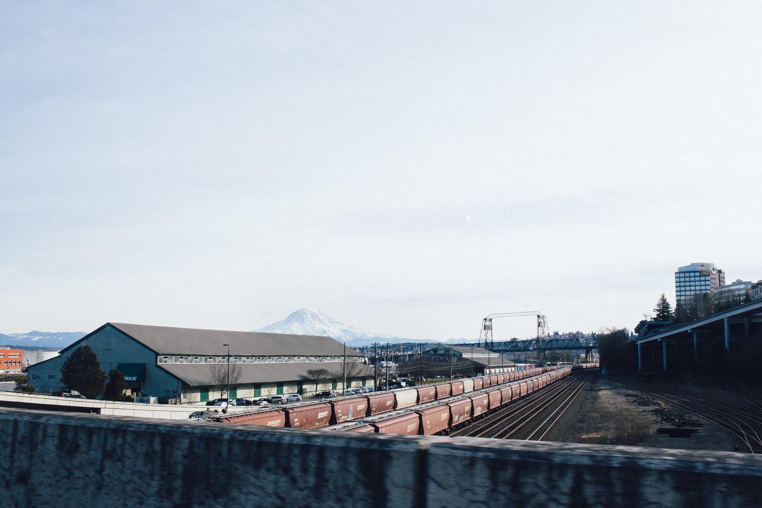 Mt. Rainier Nat'l Park_02012017_58.jpg