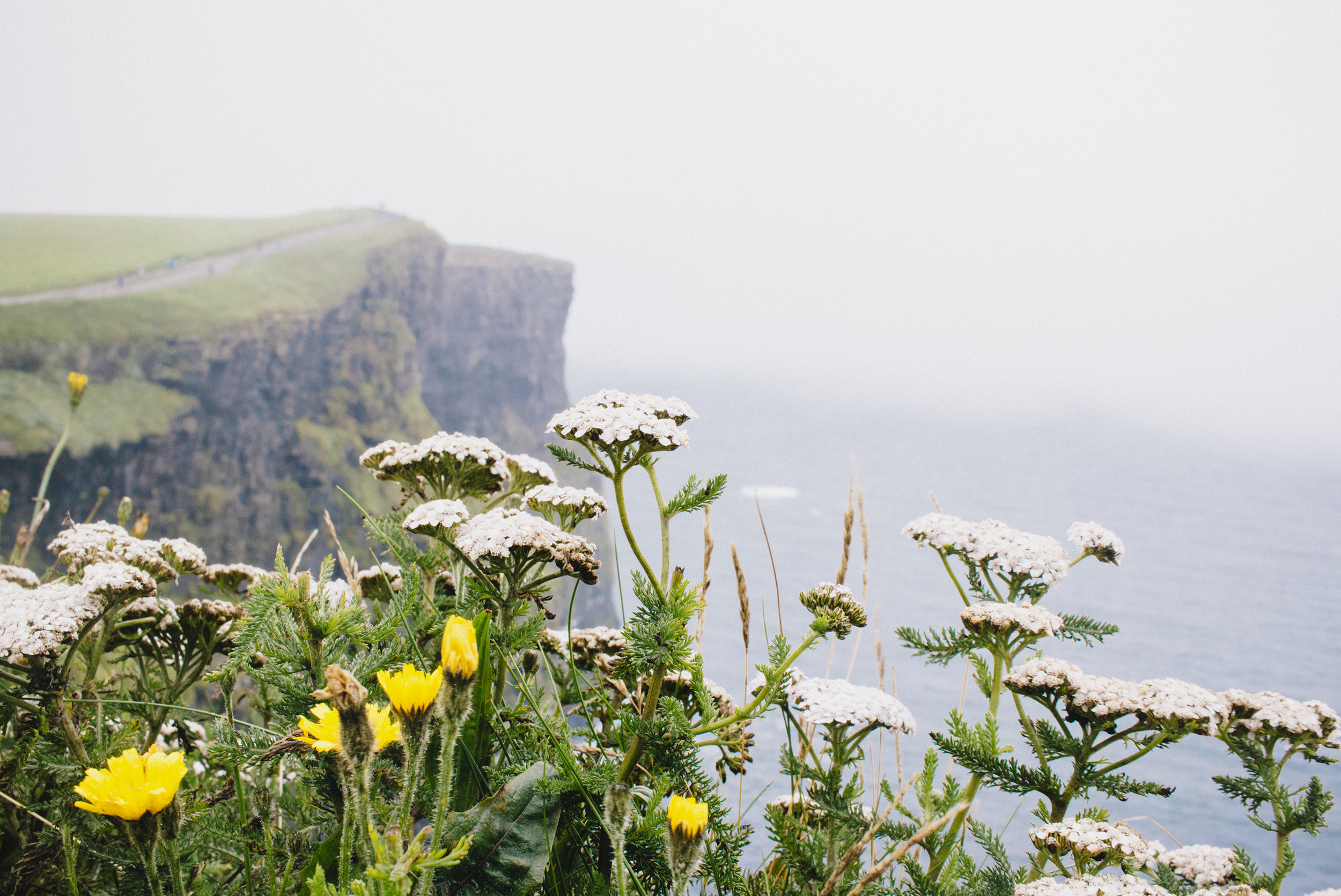 Cliffs of Moher_07272016_023 copy.jpg