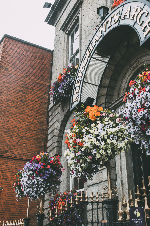 Dublin_07262016_35 copy.jpg