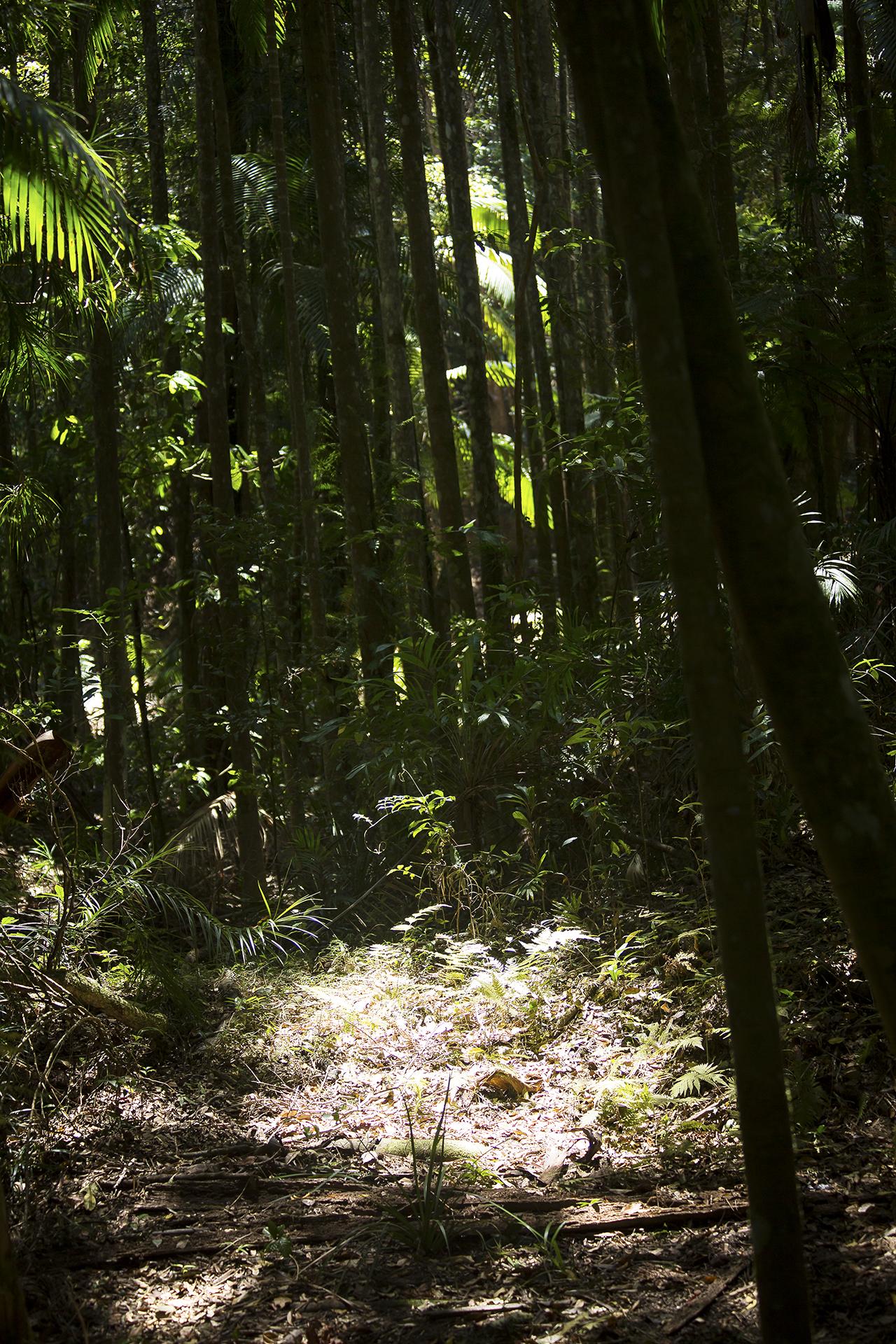 Australia553 LR.jpg