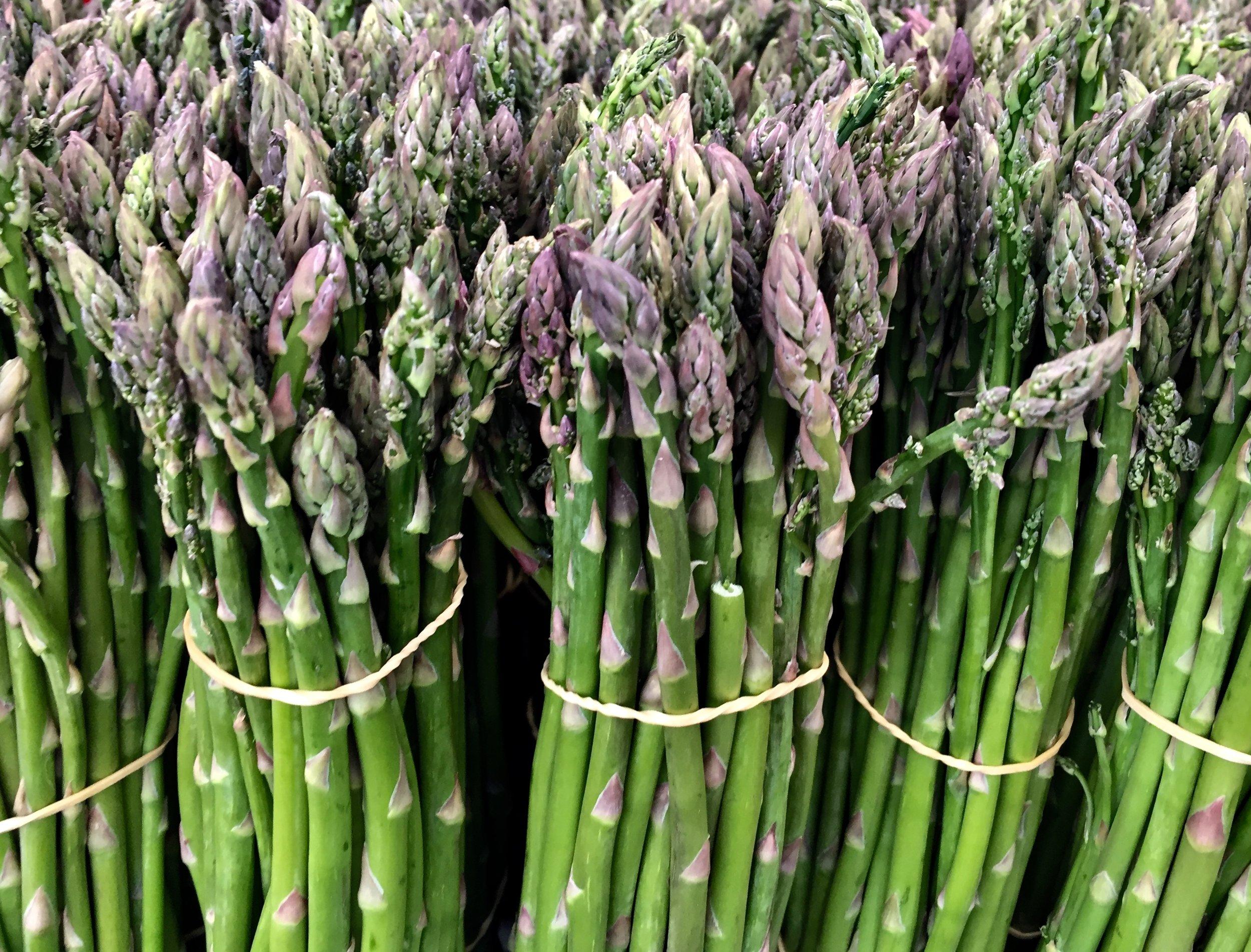 Asparagus 1.jpg