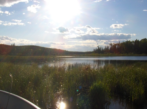 Thicketwood Lake