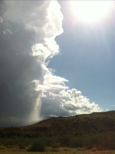 Sycamore Canyon Rainfall