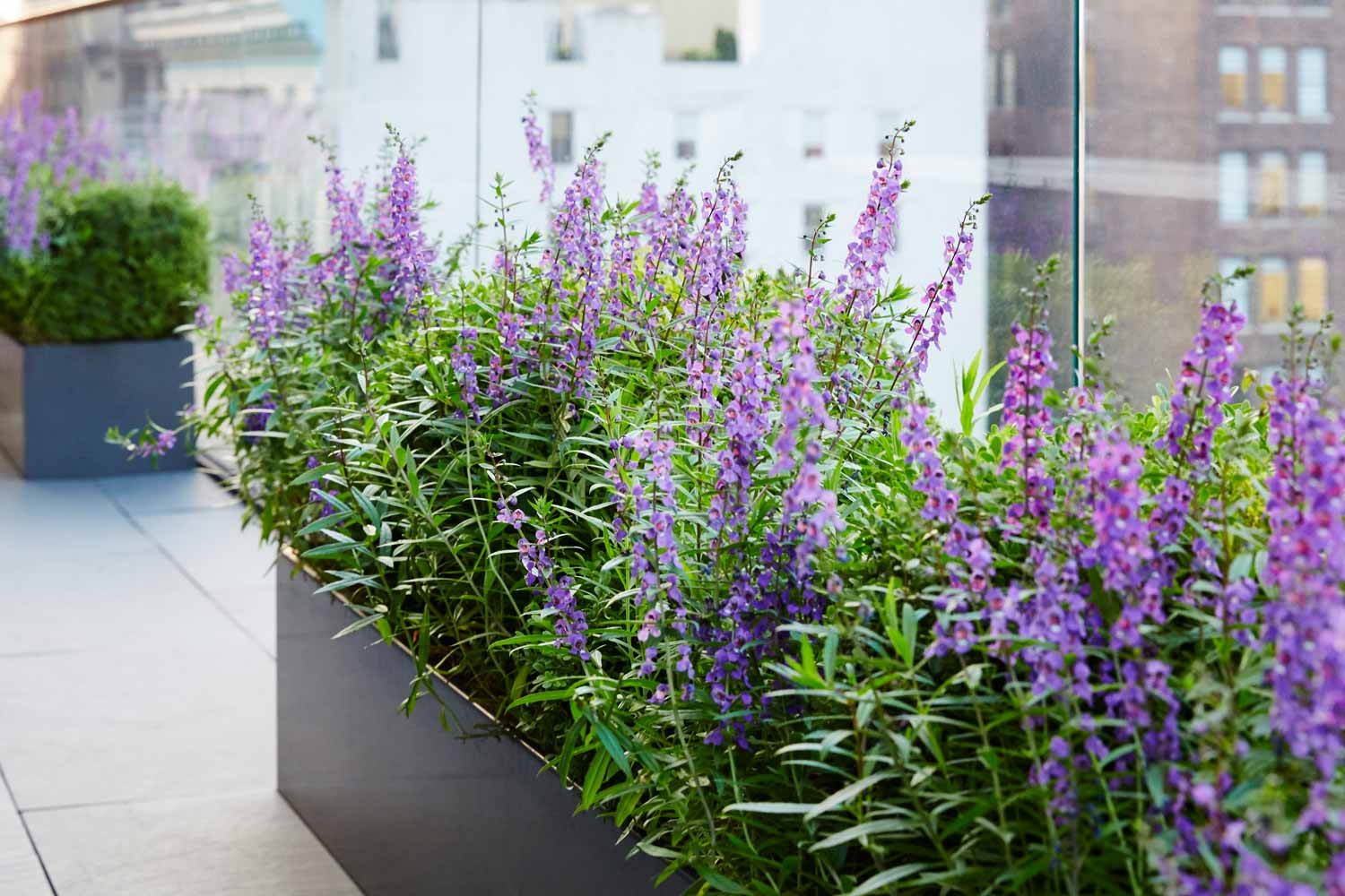 Downtown Terrace The Standard Planter Carbon Powder Coated Aluminum