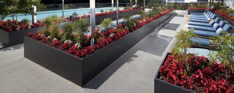 WCXCX-Plant stands Porte-Plantes Int/éRieur Et Ext/éRieur Pr/éSentoir /à Fleurs sur Pied en Bois 5 /éTag/èRes Pr/éSentoir Simple 40 /× 20 /× 145cm