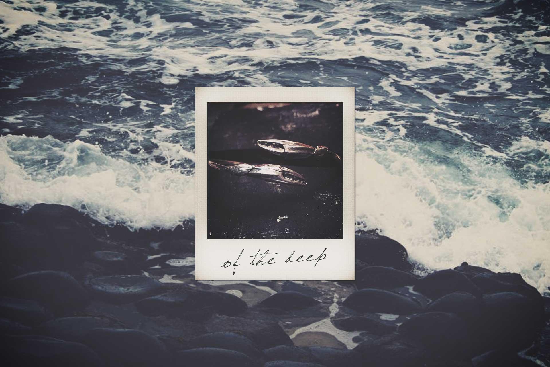 LN-polaroid-ocean2.jpg