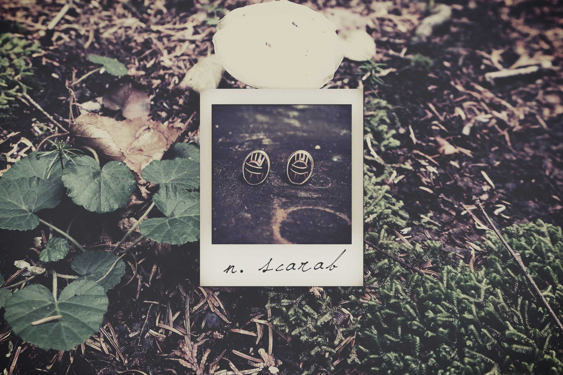 LN-polaroid-scarab2.jpg