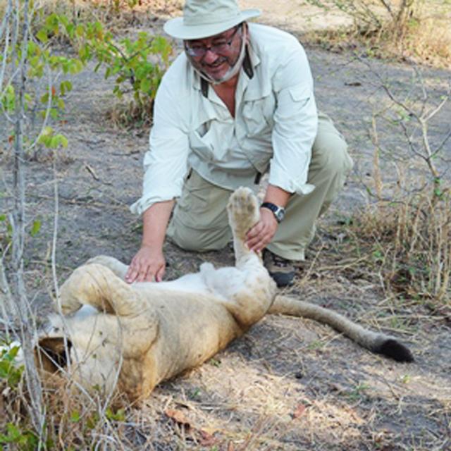 fred lion.jpg