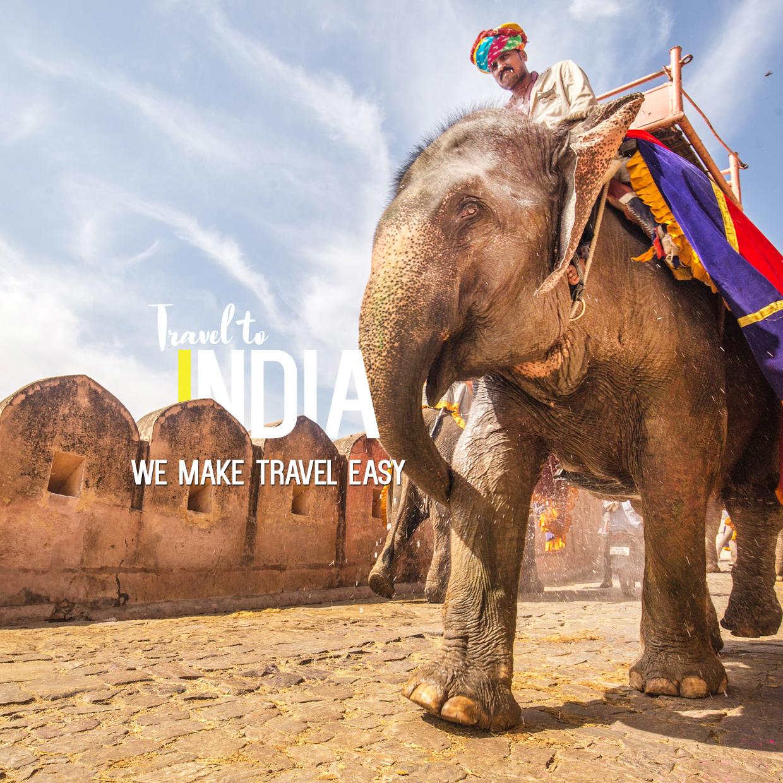 India TRAVEL copy.jpg