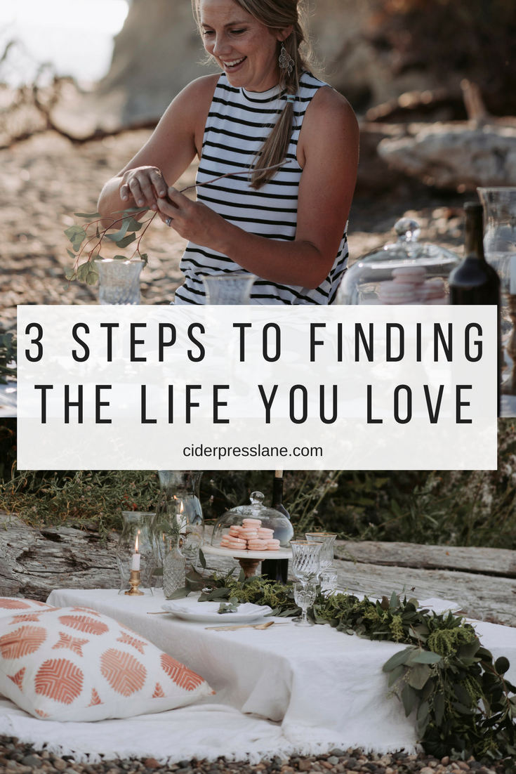 3 Steps to Finding the life you love.png