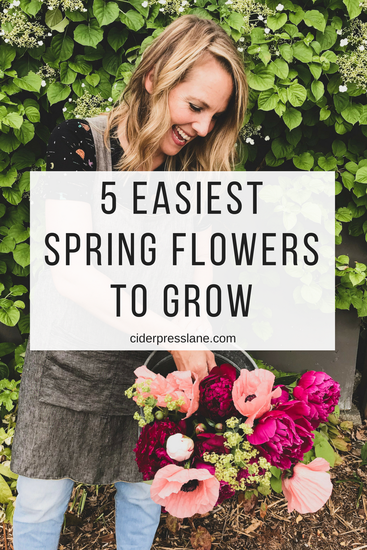 5 Easiest Spring Flowers To Grow(1).png