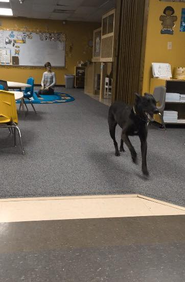 We told Joy that Frank was coming to Sunday school and she ran back and forth through the room till she was wiped out.
