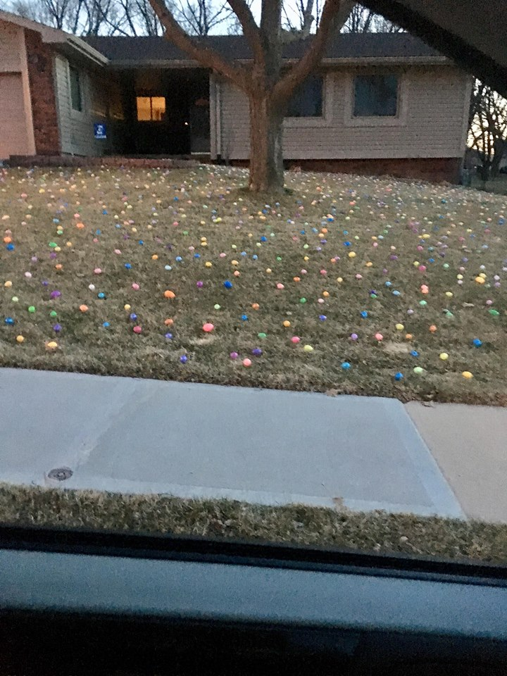 "Mom and Dad's neighbors decorated their yard! The girls said, ""They didn't do a very good job finding eggs."" :D"