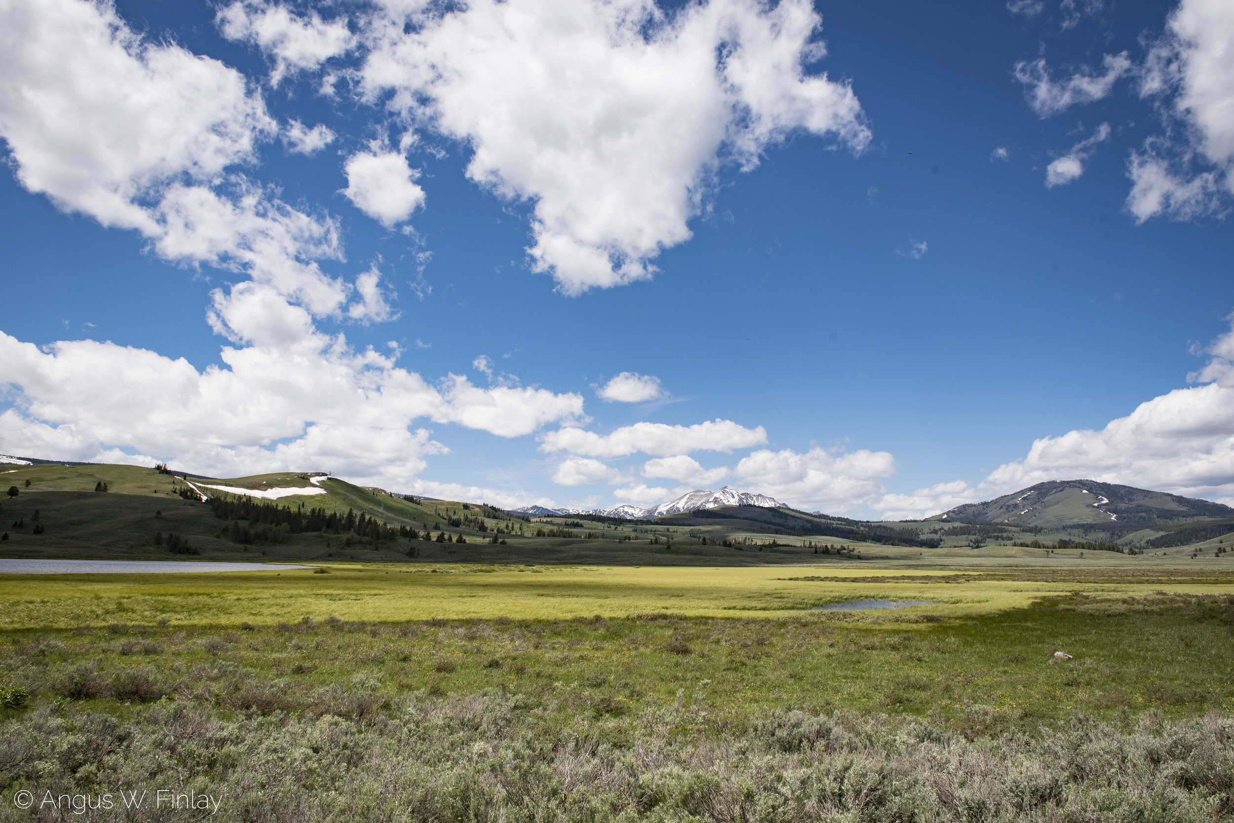 Upper Yellowstone