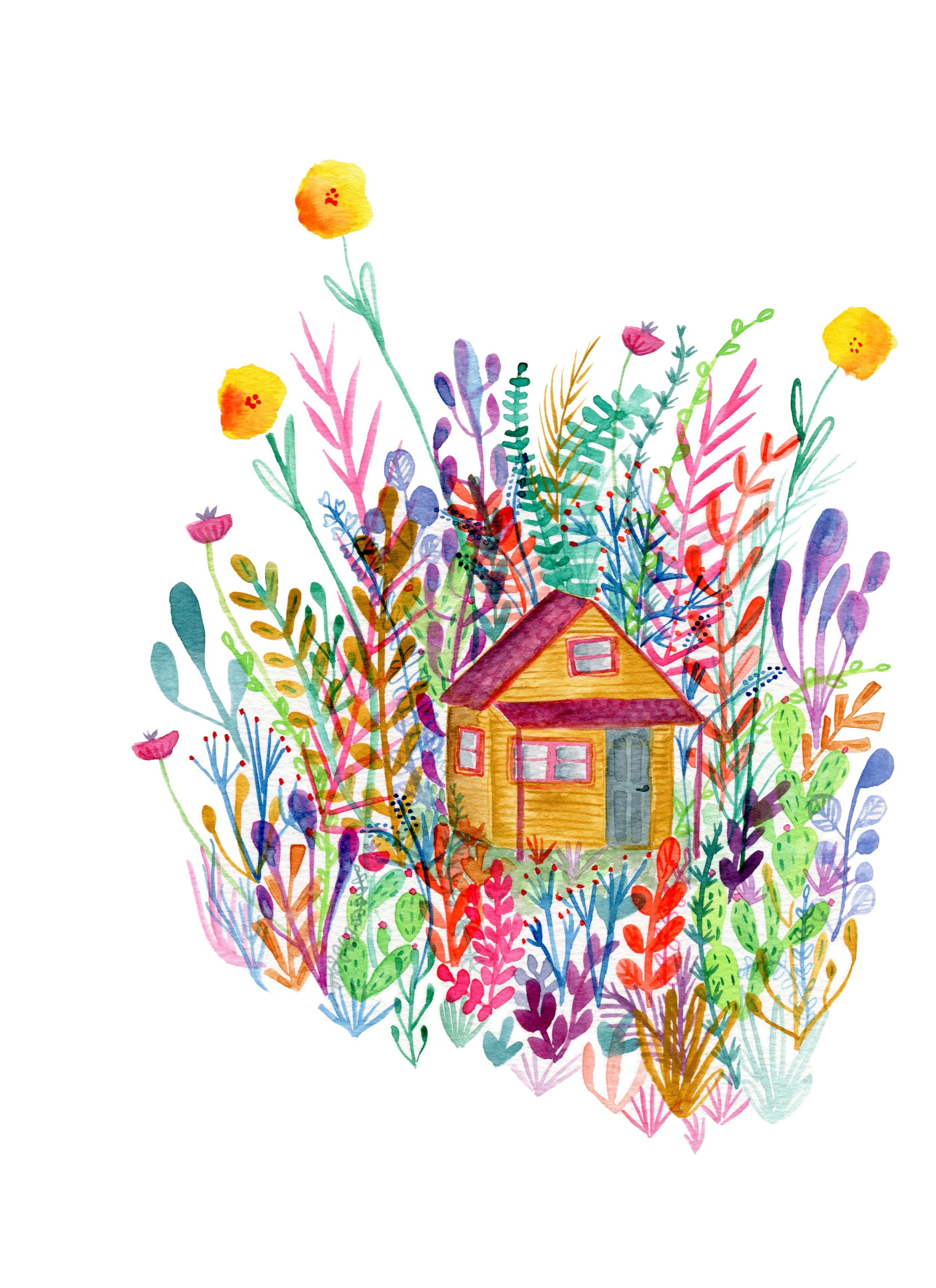 Fauna house.jpg