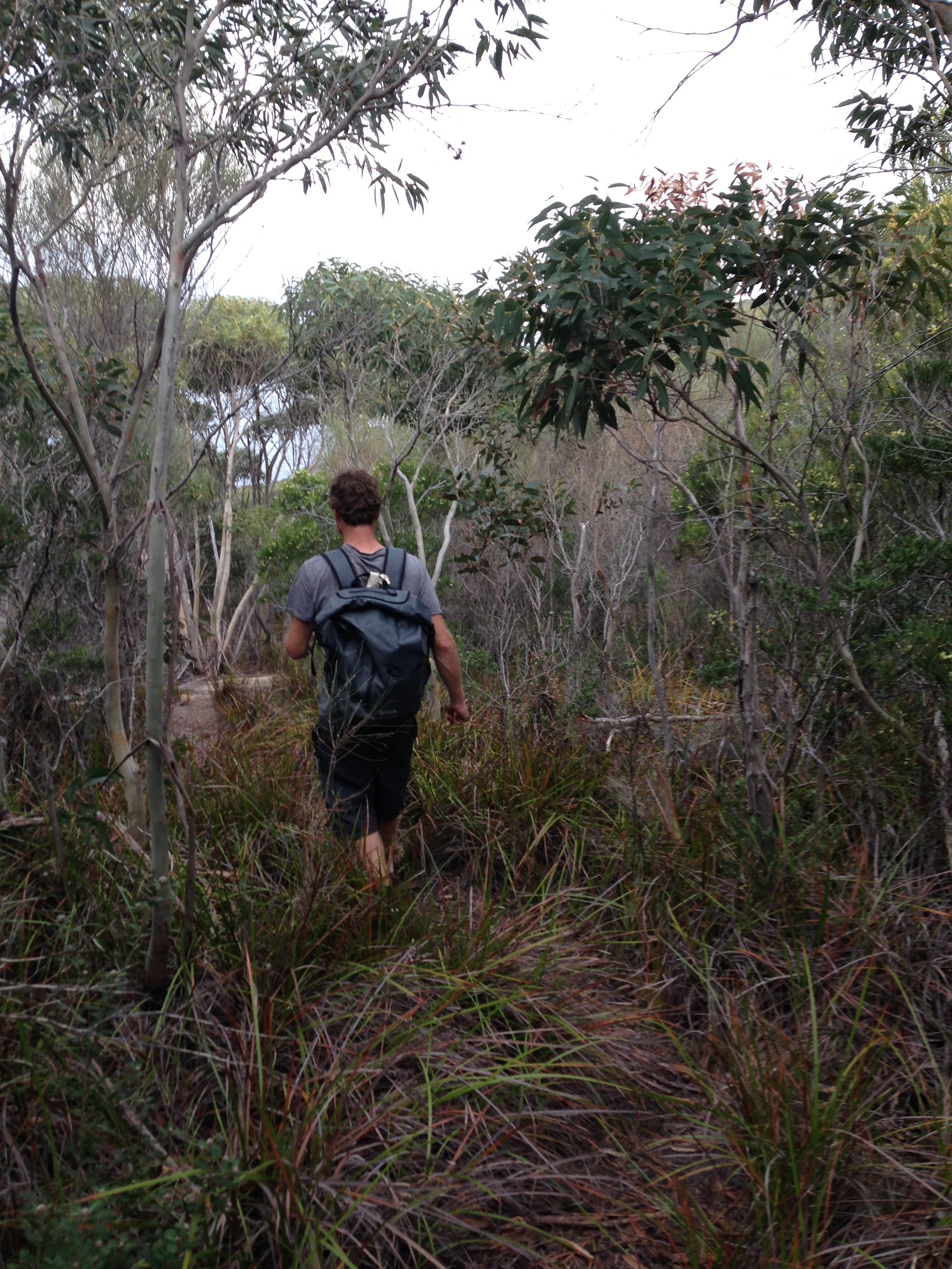 Mick leading the way to the Crash sight, scaring the snakes off for me.