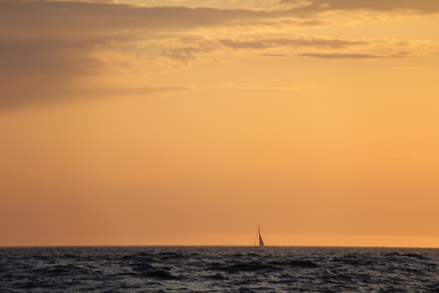 A yacht on the horizon , not long now and Roam will have a mast...