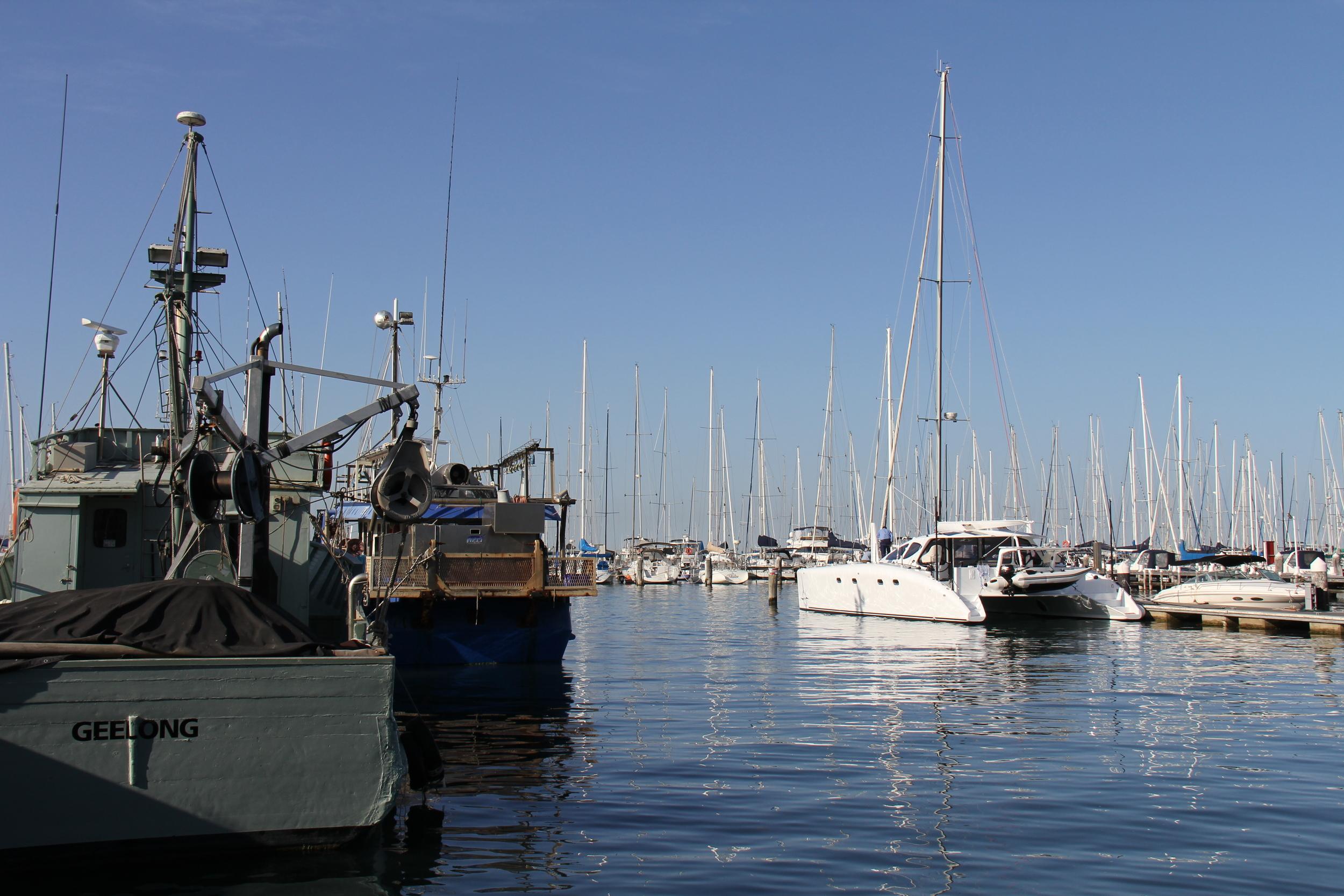 Thanks for having us Royal Geelong Yacht club.