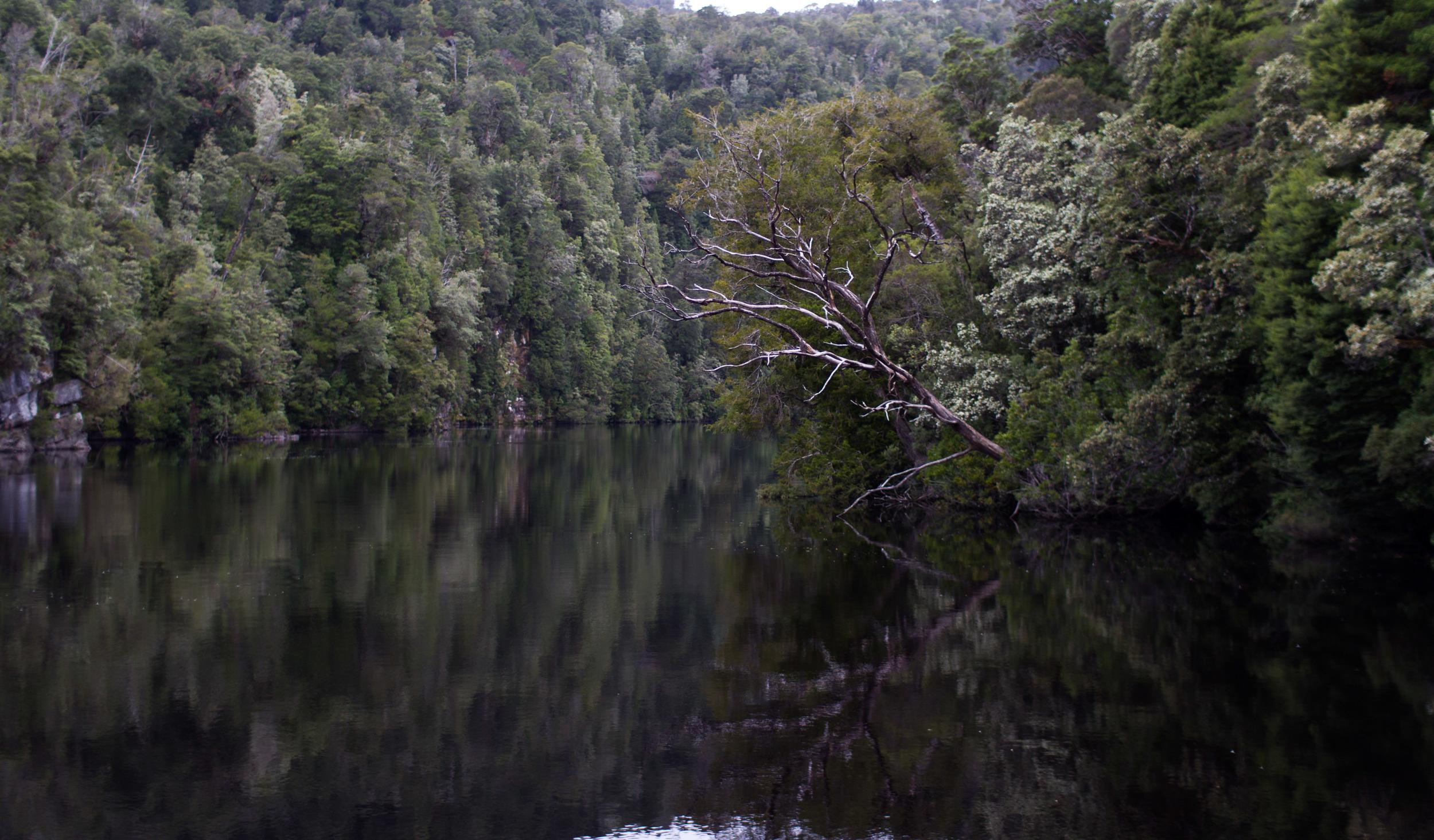 The Gordon River, Tasmania.