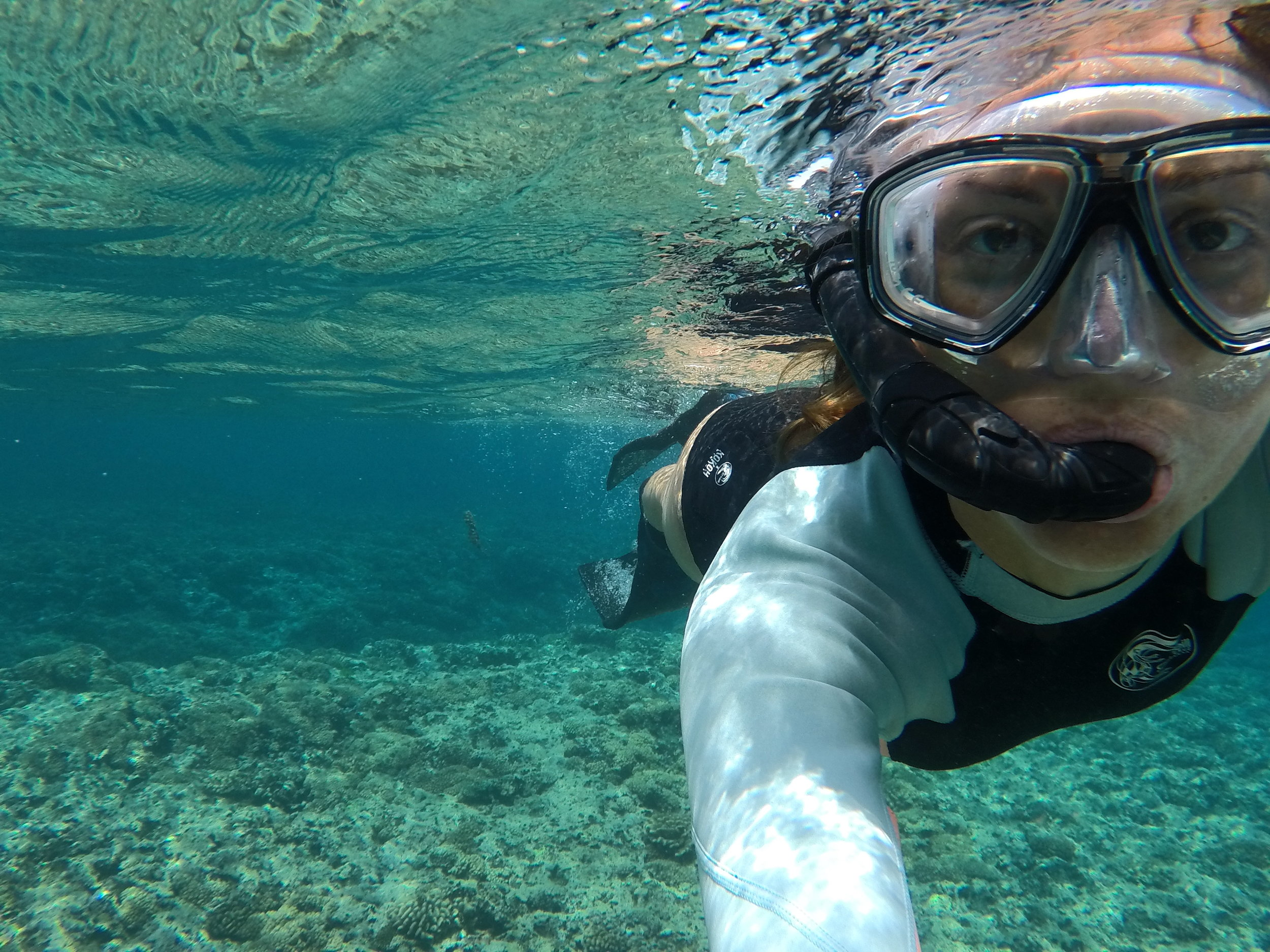 Free diving and snorkelling - soooo good.