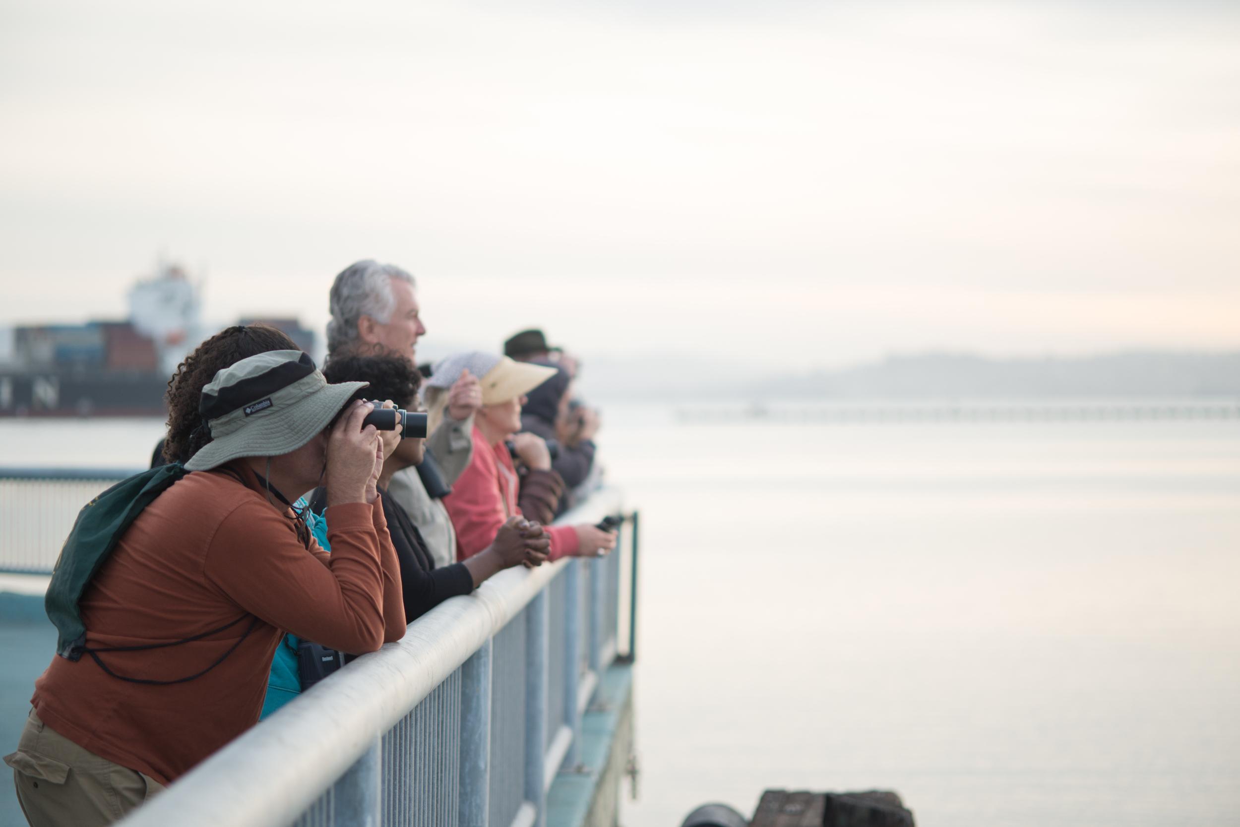 Birders on the lookout! (Taji Allen)