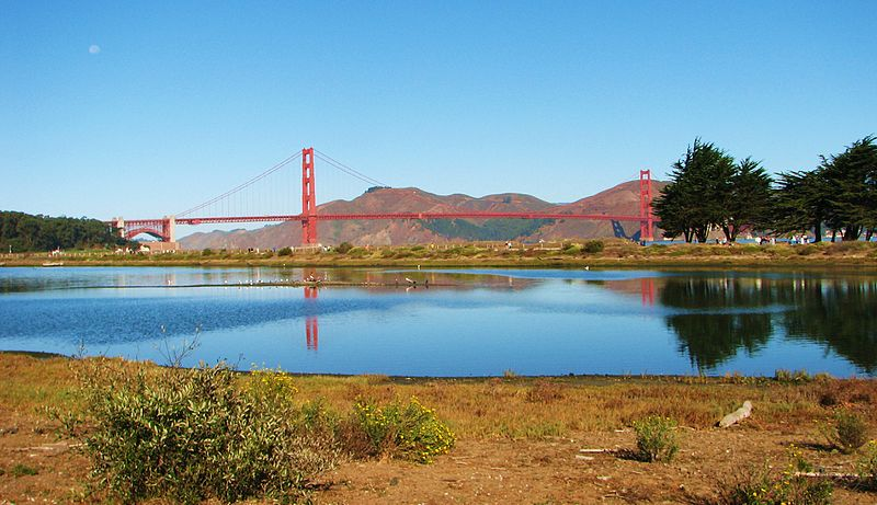Crissy Field marsh. Photo: Wikimedia