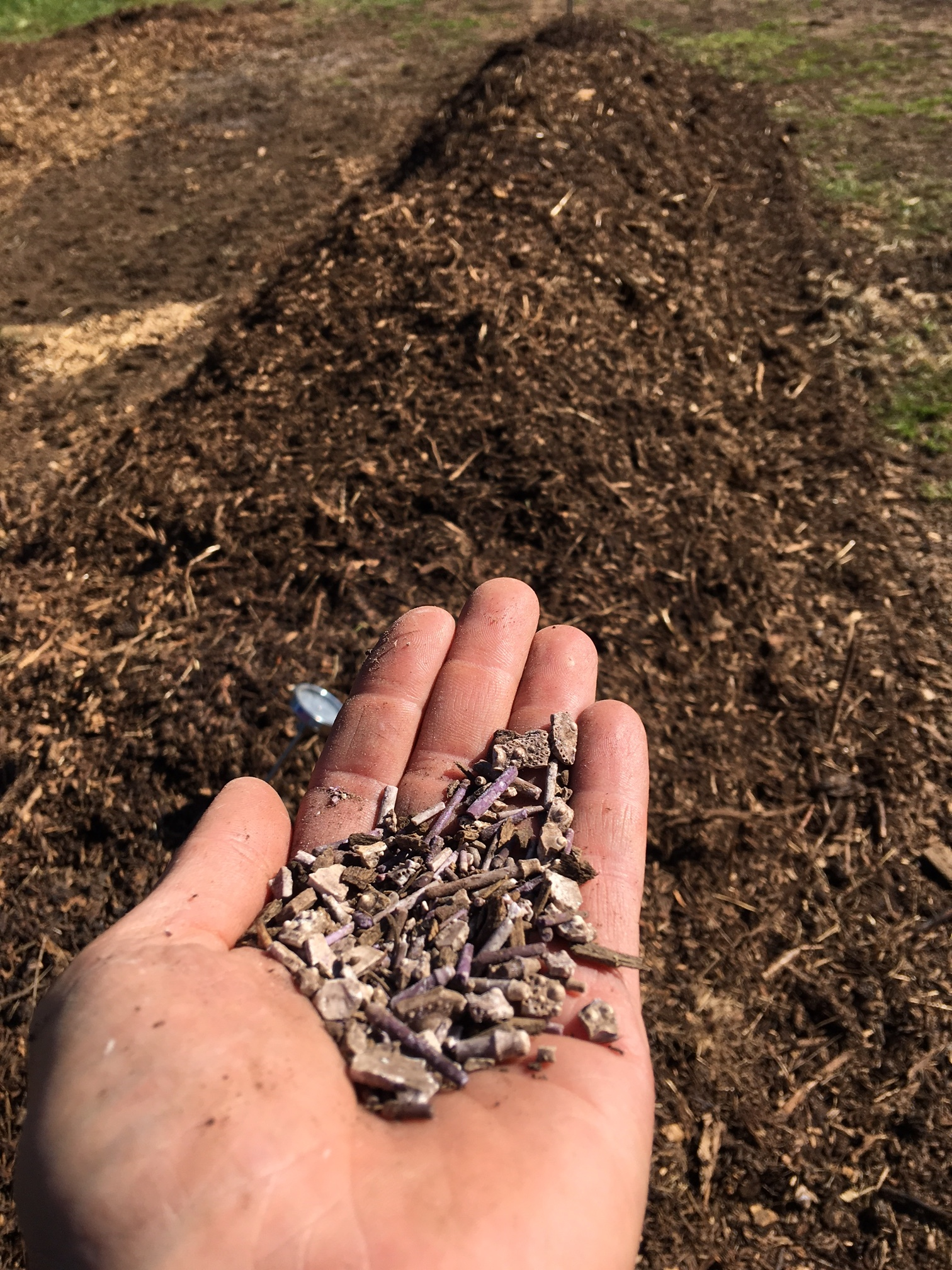 urchin compost