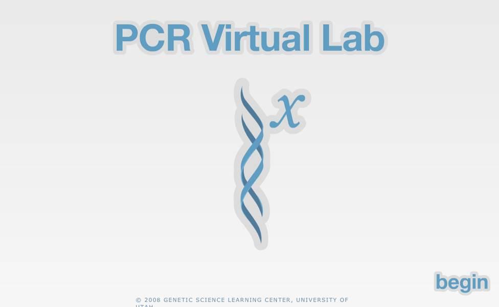 PCRlab.jpg