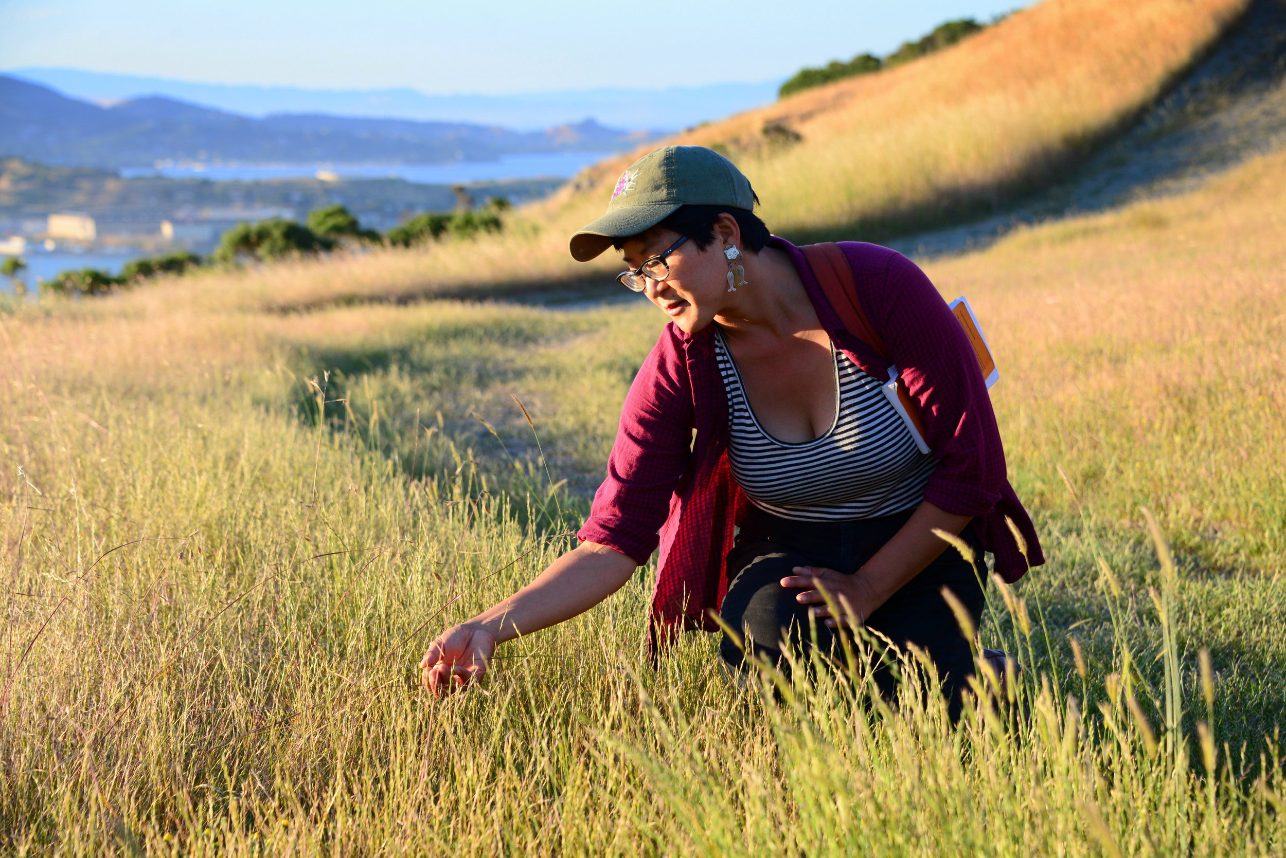 CCNH naturalist Angela Pai helping identify grasses