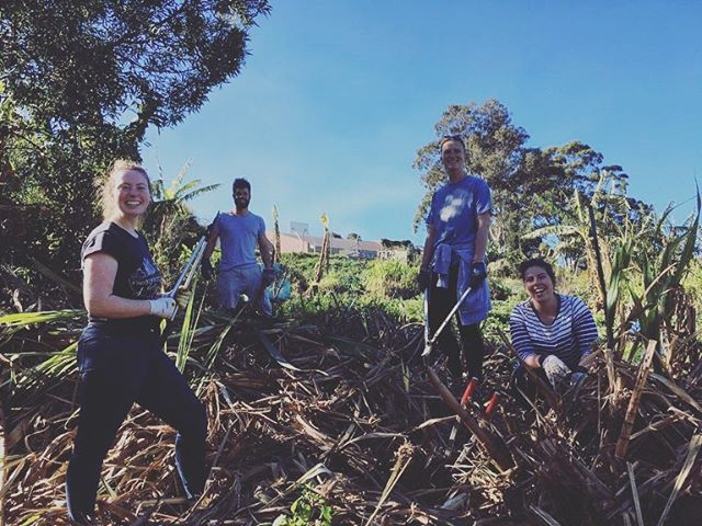 Our LTN crew spent some time this week volunteering at a local permaculture farm/social enterprise called Green Connect (@greenconnect_ ) that grows fair food and employs former refugees. Get behind these folks!