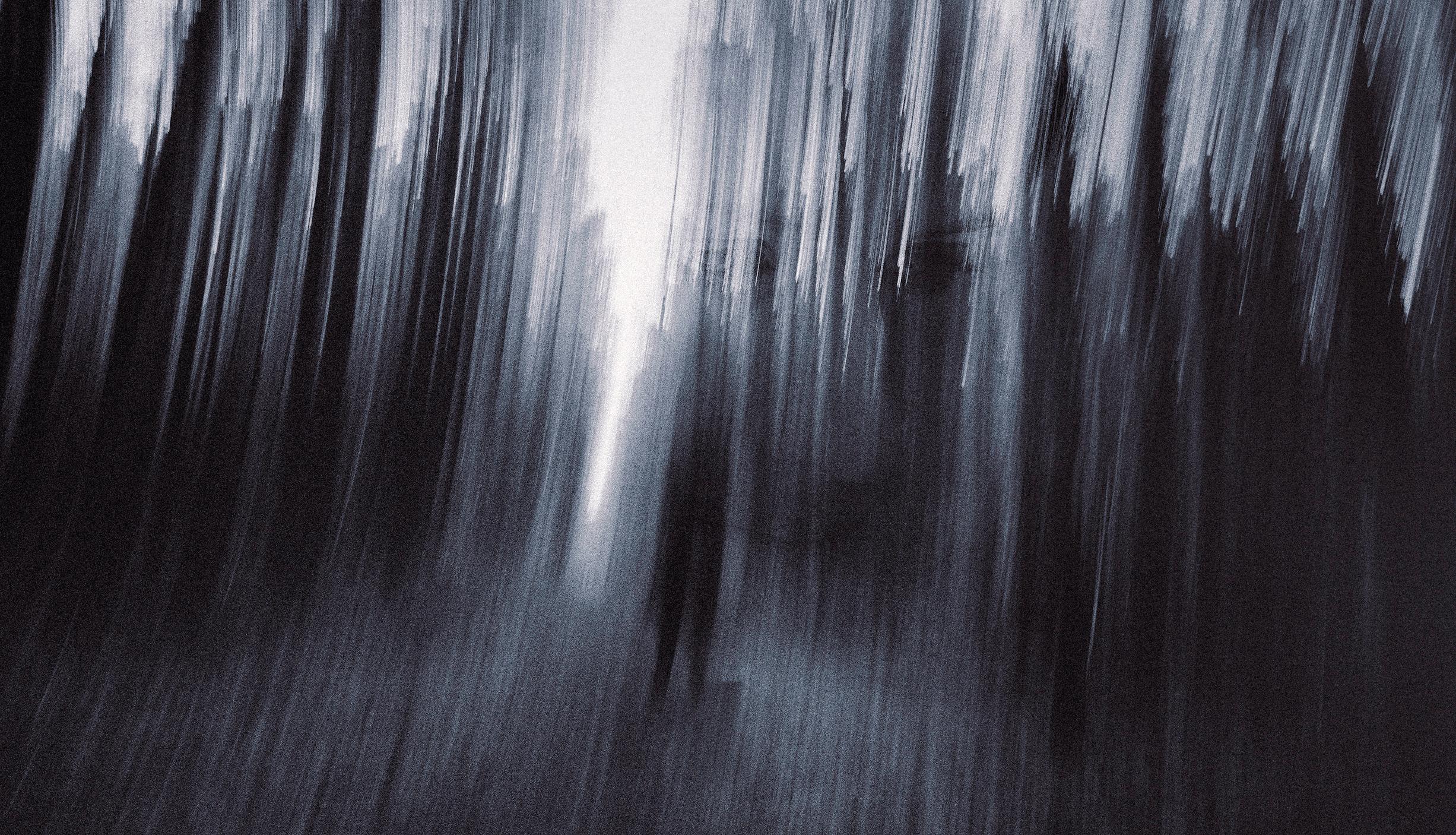 Wood_2016.jpg